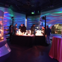 Corporate Event at California Academy of Sciences