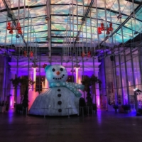 Holiday Party at California Academy of Sciences in San Francisco, CA
